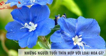 Những người tuổi Thìn hợp với loại hoa gì?