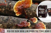 Địa chỉ bán nấm lim xanh tỉnh tại tỉnh Bình Phước uy tín